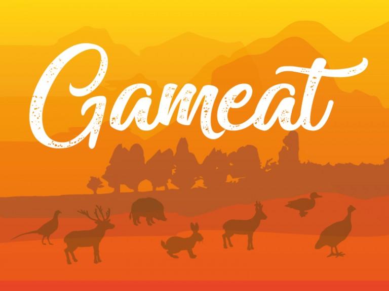 Gameat_800x600